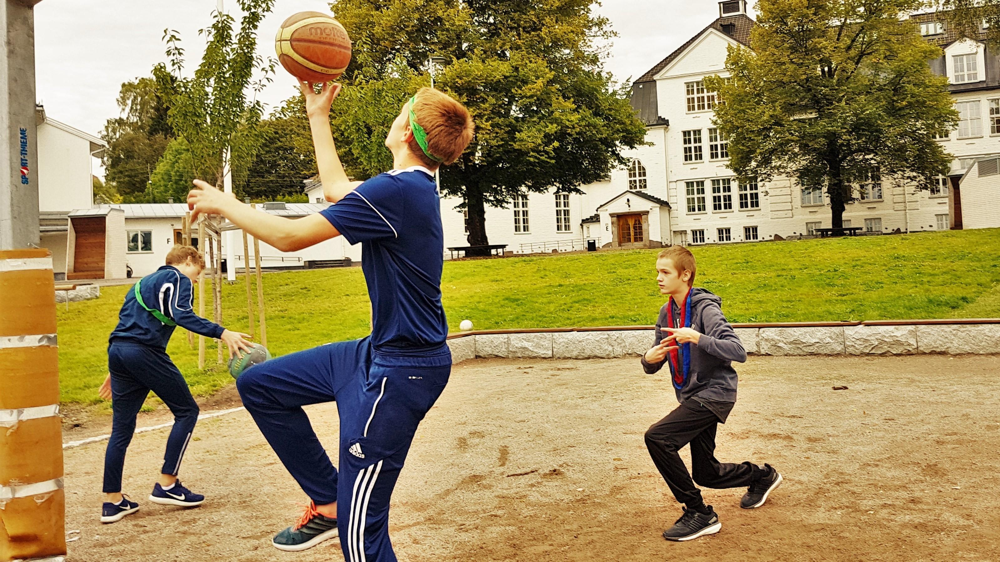 Basket gutta